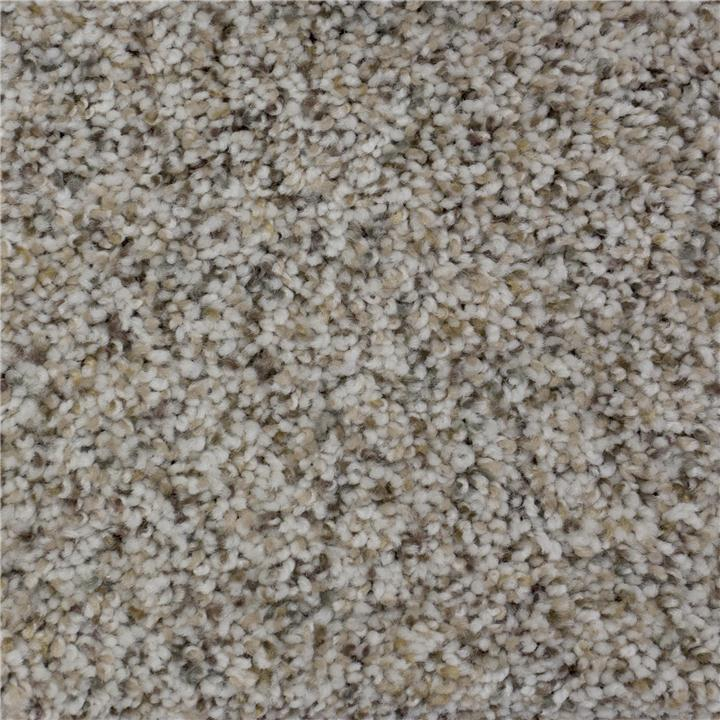 Flooring Carpet Upgrade Home Options Db Homes